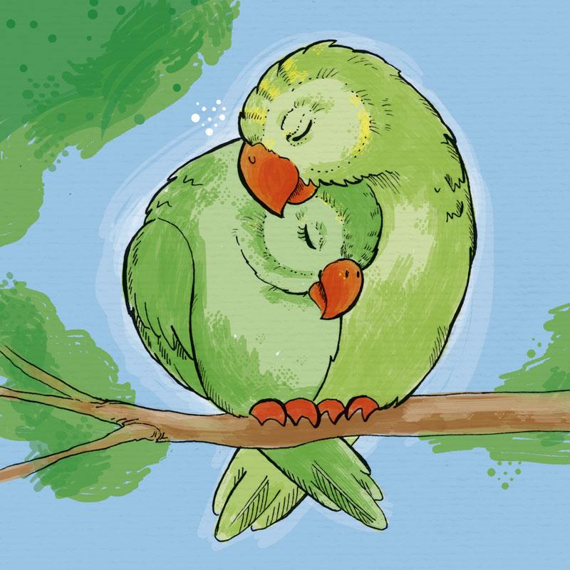 Auch Vögel wollen kuscheln - wie diese beiden Sittiche.